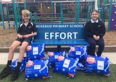 Rosebud Priamry school teamwork