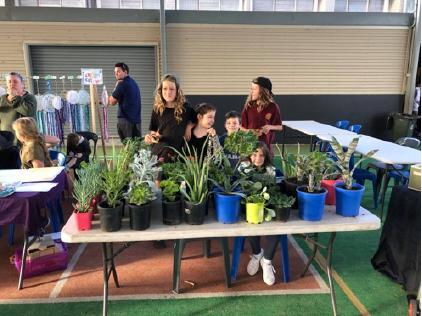 Rosebud Primary School_Market 1
